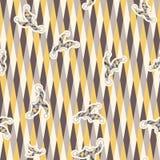 Rhombus geometric texture with clown hat. Stock Photos