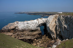 Rhoscolyn coastline Royalty Free Stock Photo