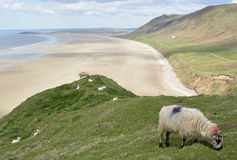 Rhossili Bay on the Gower Peninsular, Wales, UK Stock Images
