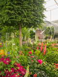 RHS切尔西花展2017年 世界` s显示在庭院设计的多数有名望的花展最好 免版税图库摄影