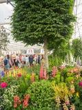 RHS切尔西花展2017年 世界` s显示在庭院设计的多数有名望的花展最好 库存照片