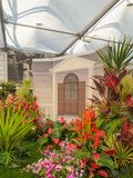 RHS Chelsea Flower Show 2017. A Barbados Horticultural Society display at the Great Pavilion. RHS Chelsea Flower Show 2017. A Barbados Horticultural Society ` Royalty Free Stock Photography