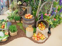 RHS Chelsea Flower Show 2017. A beautiful vegs, plants and flowers display of the Great Pavilion. RHS Chelsea Flower Show 2017. A beautiful fruit, vegs, plants Stock Photo