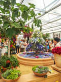 RHS Chelsea Flower Show 2017 O ` s do mundo a maioria de mostra de flor prestigiosa que indica o melhor no projeto do jardim Fotografia de Stock