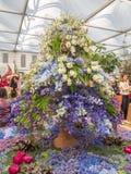 RHS Chelsea Flower Show 2017 O ` s do mundo a maioria de mostra de flor prestigiosa que indica o melhor no projeto do jardim Fotos de Stock Royalty Free