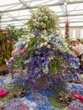 RHS Chelsea Flower Show 2017 O ` s do mundo a maioria de mostra de flor prestigiosa que indica o melhor no projeto do jardim Fotos de Stock