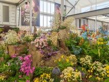 RHS Chelsea Flower Show 2017 O ` s do mundo a maioria de mostra de flor prestigiosa que indica o melhor no projeto do jardim Foto de Stock