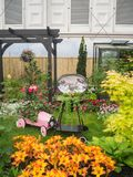 RHS Chelsea Flower Show 2017. A beautiful plants and flowers display of the Great Pavilion. RHS Chelsea Flower Show 2017. View of a beautiful colorful plants Stock Photo