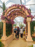 RHS Chelsea Flower Show 2017. The world`s most prestigious flower show displaying the best in garden design. LONDON, UK - MAY 25, 2017: RHS Chelsea Flower Show Stock Photo