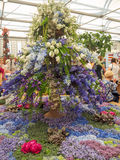 RHS Chelsea Flower Show 2017. The world`s most prestigious flower show displaying the best in garden design. Royalty Free Stock Images
