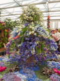 RHS Chelsea Flower Show 2017. The world`s most prestigious flower show displaying the best in garden design. LONDON, UK - MAY 25, 2017: RHS Chelsea Flower Show Stock Photos
