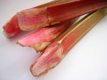 Rhubarb. Fresh rhubarb Stock Photo