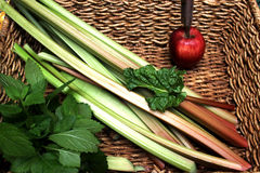 Rhubarb in Basket with Lemon Balm and Apple Royalty Free Stock Image