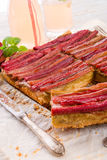 Rhubarb cake Royalty Free Stock Photography
