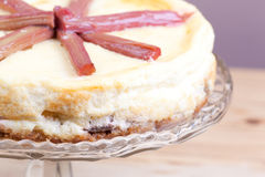 Rhubarb cheese cake Stock Image