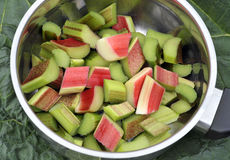Rhubarb. Chopped ready to cook in a saucepan.  is a herbaceous perennial vegetable which is often treated as a fruit in culinary use Royalty Free Stock Photos
