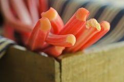 Rhubarb close-up Stock Image