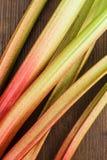 Rhubarb Stock Photography