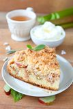 Rhubarb crumb cake. Homemade crumb cake with rhubarb pieces royalty free stock photography