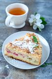 Rhubarb crumb cake. Homemade crumb cake with rhubarb pieces stock photography