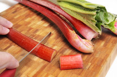 Rhubarb Cutting Royalty Free Stock Photos