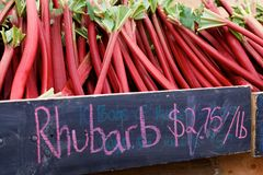 Rhubarb at Farmer's Market Stock Photography