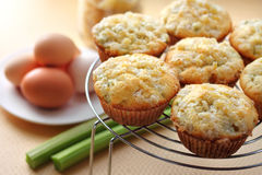 Rhubarb and ginger muffins. Rhubarb muffins with sugared ginger stock photography