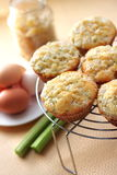 Rhubarb and ginger muffins. Rhubarb muffins with sugared ginger stock photos