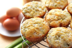 Rhubarb and ginger muffins. Rhubarb muffins with sugared ginger royalty free stock images