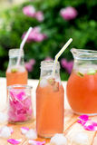 Rhubarb hibiscus iced tea with rose petals in the garden Royalty Free Stock Photos