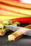 Rhubarb knife cutting Stock Image