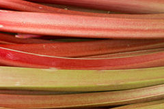Rhubarb, Nuremberg, Germany Royalty Free Stock Photos