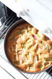 Rhubarb pie. A rhubarb pie European sytle fresh out of the oven Royalty Free Stock Images