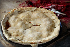 Rhubarb Pie Royalty Free Stock Photos