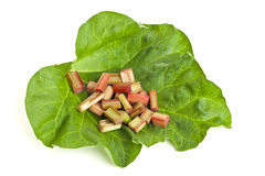 Rhubarb pieces on a leaf Royalty Free Stock Images