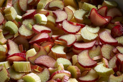 Rhubarb slices Stock Photography