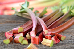Rhubarb stalks Stock Photography