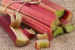 Rhubarb stalks Royalty Free Stock Photo