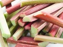 Rhubarb stalks. Stock Images