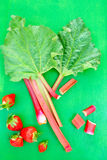Rhubarb and strawberry Stock Photography