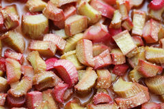 Rhubarb tart Stock Photo