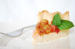 Rhubarb tart cake. Decorated with mint Royalty Free Stock Photography