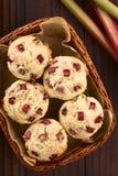 Rhubarb and Yogurt Muffins Royalty Free Stock Photos