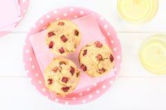 Rhubarb and Yogurt Muffins Royalty Free Stock Photo