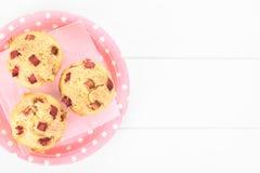 Rhubarb and Yogurt Muffins Stock Photo