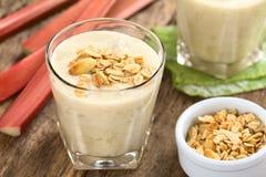 Rhubarb and Yogurt Smoothie Stock Photography