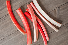 rhubarbe Photographie stock libre de droits