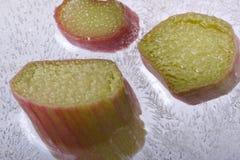 rhubarbe de glace Images libres de droits