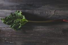 Rhubarbe fraîche sur la vieille, grise table en bois Images stock
