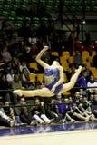 Rhythmic gymnastics Italian Championships Royalty Free Stock Photos